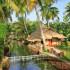 Kerala – Cheruthuruthy